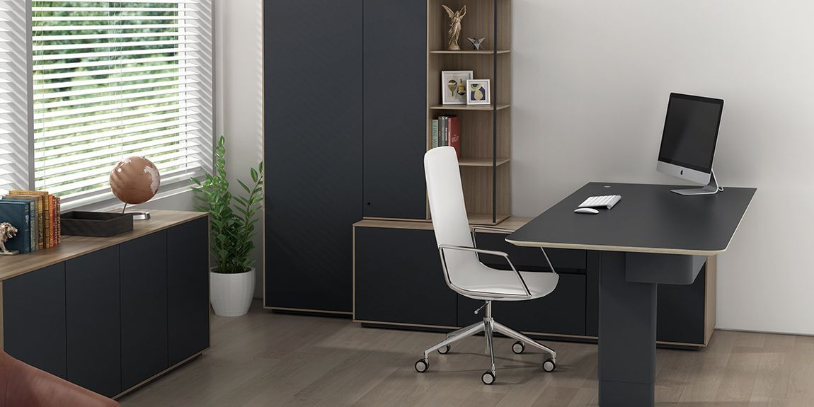 Contemporary Office and Furniture