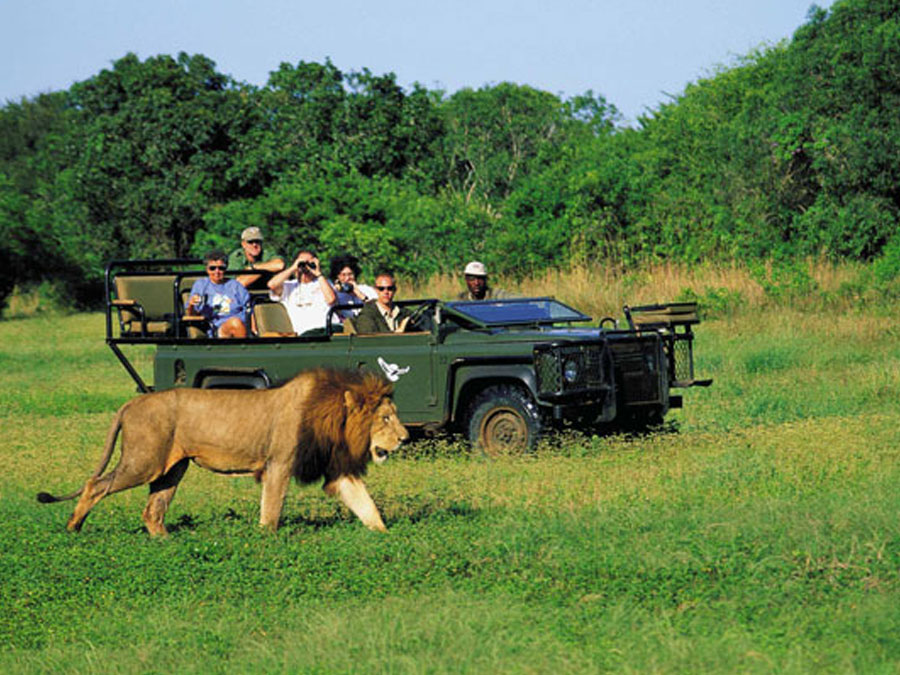 Travel in South Africa – Visit the Free State